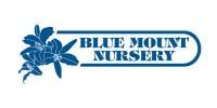 bluemountnursery